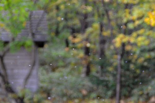 12.10.29-E99BAAE899AB02-thumbnail2.jpg