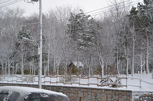 12.11.27雪02.jpg