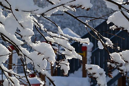 13.11.28雪景色03.jpg