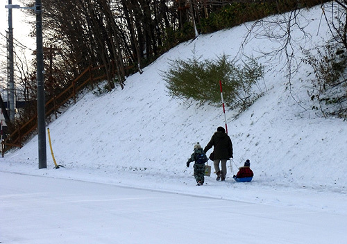 13.11,12雪001..jpg