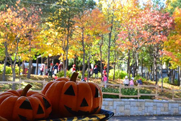 14.10.15.公園かぼちゃ.jpg