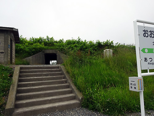 150706おおかりべ駅001.jpg