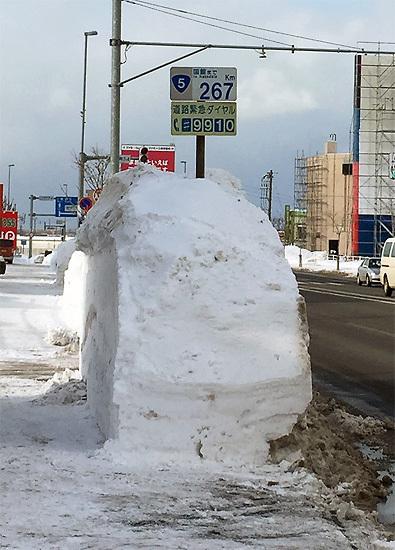 160129道路の雪002.jpg
