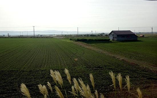札沼線2014-10-06-049.jpg