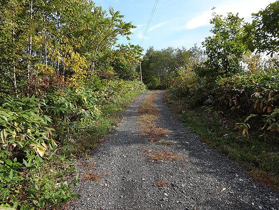 札沼線2014-10-06-053.jpg
