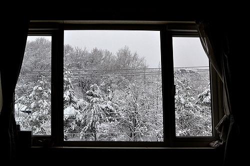 13.11.28雪景色01.jpg