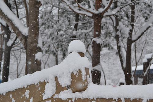13.12.31雪005.jpg