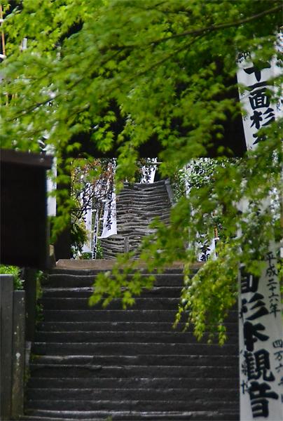 15.4.13鎌倉杉本寺0003.jpg