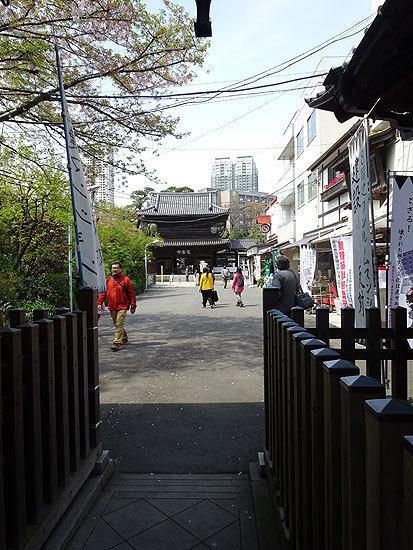 15.4.15泉岳寺 赤穂浪士002.jpg