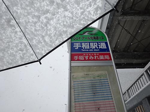 151124雪001.jpg