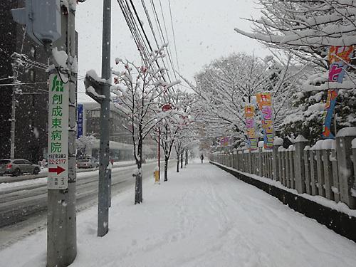151124雪002.jpg