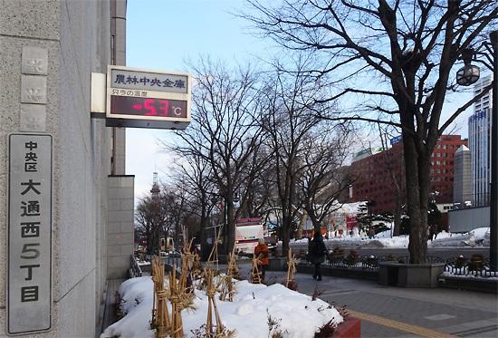 160131雪祭り06.jpg