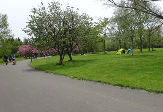160515百合が原公園001.jpg